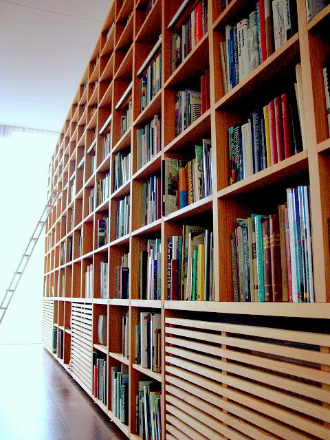 http://martmeubel.nl/wp-content/uploads/Loft-Boekenkast-Rotterdam-2.jpg